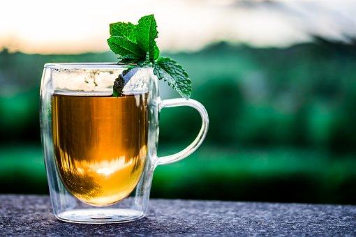 福壽茶、福壽山茶、福壽茶購買、福壽山茶推薦